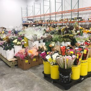 Cooler of Wholesale Flowers in Laurel