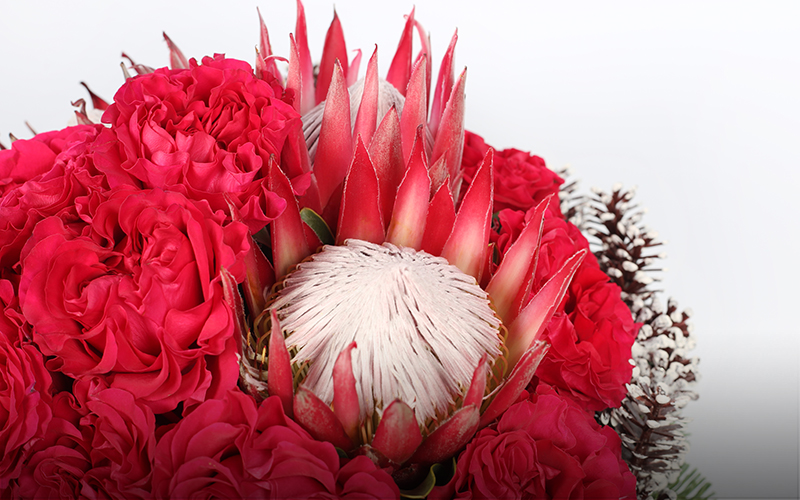38831.00_Genevieve_Compote_GardenRose_Protea_Pinecones_Greens_07